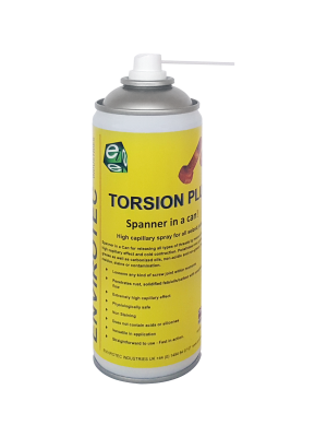Torsion Plus