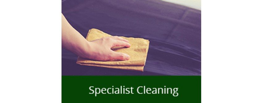 Specialist Cleaning
